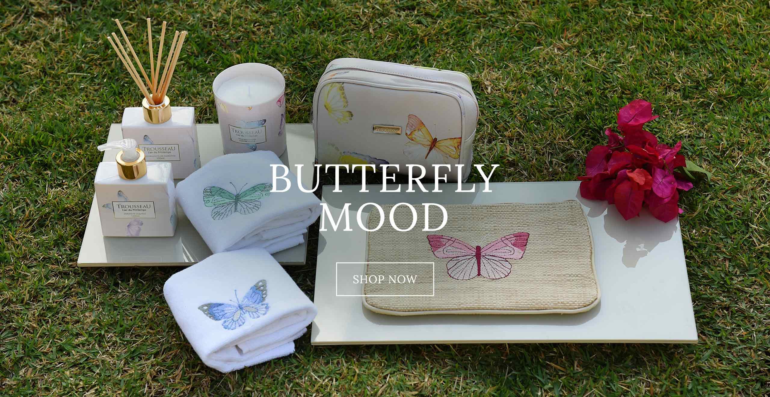Butterfly_12_12_17